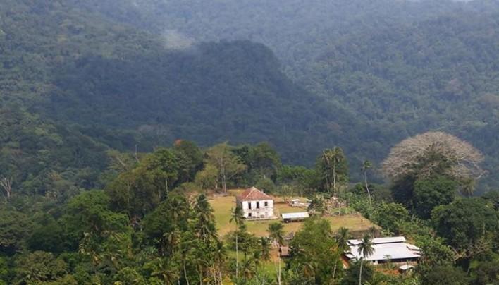 Coffee of The Day: Tiny And Exotic Sao Tome e Principe