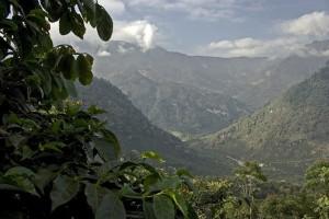 El Injerto Coffee Farm in Huehuetenango Mountains in Guatemala