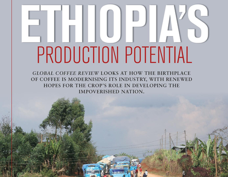 ORIGIN INSIGHT: Ethiopia Coffee Renovation Starting to Yield Results