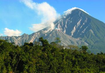 Coffee of The Day: Guatemala Antigua Strictly Hard Bean