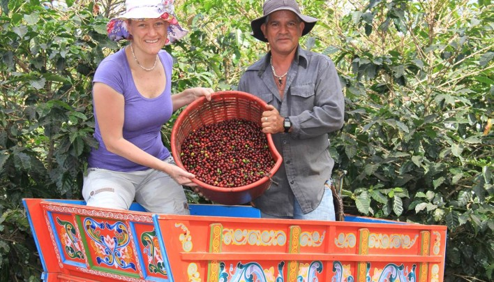 On Coffee Safari In Costa Rica, New 2014-15 Crop Seen Down 30% But Quality In Top