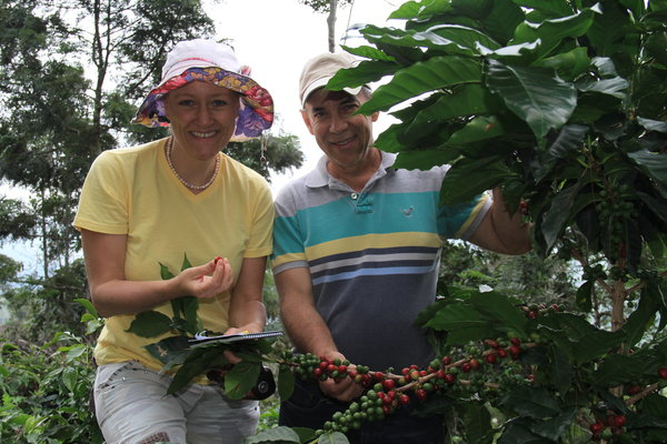 Coffee of The Day: Outstanding Single Variety Typica Bean From Dominican Republic's Don Alfredo Estate Coffee