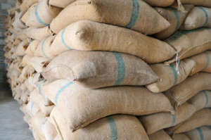 STOCK WATCH: ICE Certified Arabica Coffee Stocks Stay At 5-Year-Lows, Fall To 1.29M Bags Jan 25