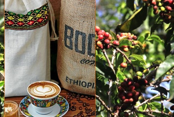 """Coffee of The Day: Boon's """"Full & Wild"""" Stunning Ethiopia Blend of Harar, Sidamo and Kaffa Beans"""