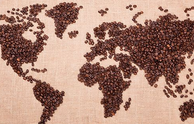FASCINATING FACT: How Many Coffee Species Are Consumed Around The World?