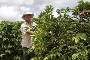Coffee Grower Paulo Oliari at Marilandia in Espirito Santo State in Brazil