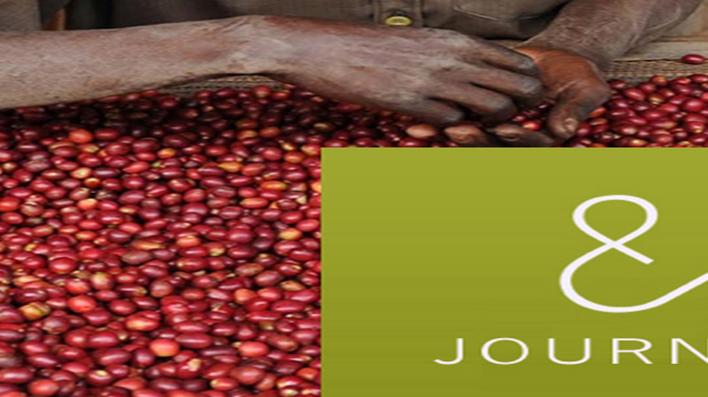 Rwanda's Quality Coffees Lure Foreign Coffee Roasters