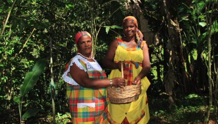 ORIGIN FOCUS: 1–THE CARIBBEAN – Coffee Islands In Paradise